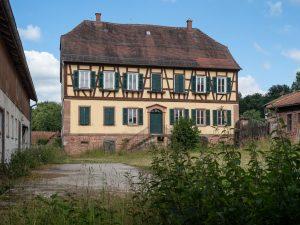 Eichenzentrum, Erlenfurt